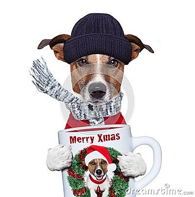 Christmas dog with cup