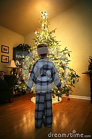 Free Christmas Eve Royalty Free Stock Photos - 17769568