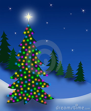 Free Christmas Eve Tree Stock Photo - 922190