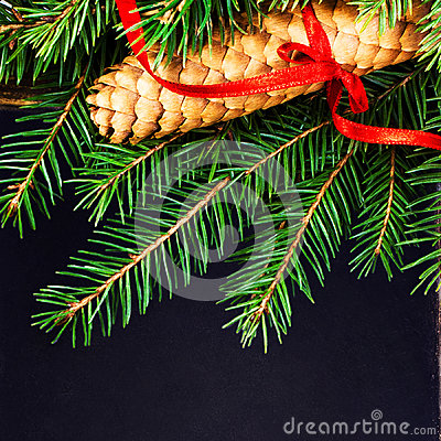 Christmas Fir Tree Branch with pine cone on vintage slate chalk