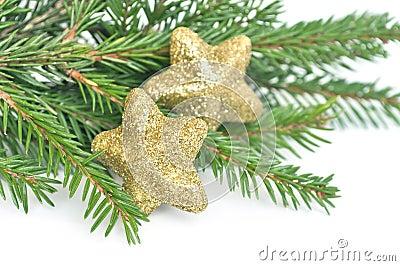 Christmas fir tree and glitter stars