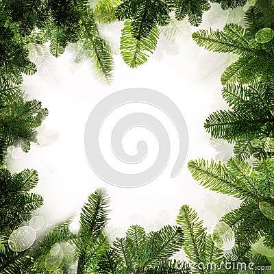 Free Christmas Frame. Background Border Of Green Xmas Tree Royalty Free Stock Image - 61818846