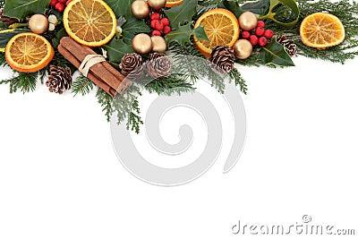 Christmas Fruit Border