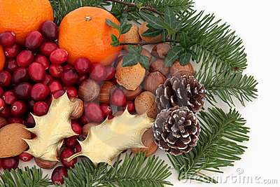 Christmas Fruit, Nuts and Fauna