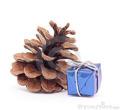 Christmas gift box and pine cone on white backgro