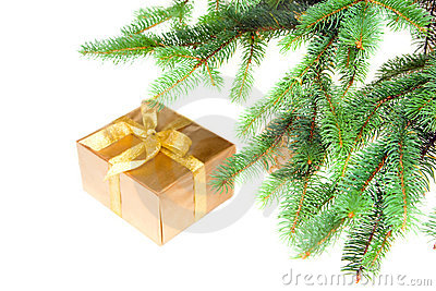 Christmas gift under the tree