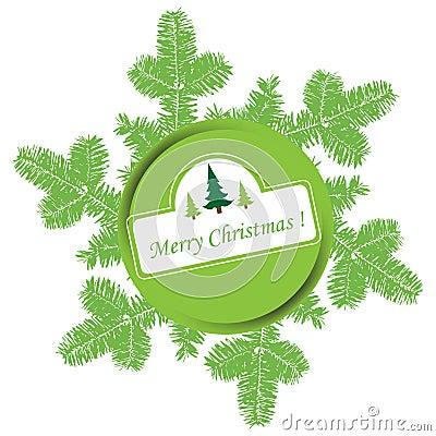Christmas green fir branches