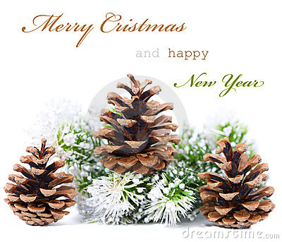 Christmas greeting card with cones