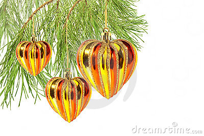 Christmas hearts on pine tree branch isolated