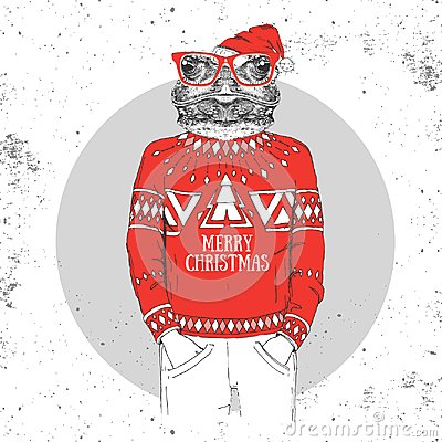 Free Christmas Hipster Fashion Animal Frog Dressed A New Year Hat Stock Photos - 100144423