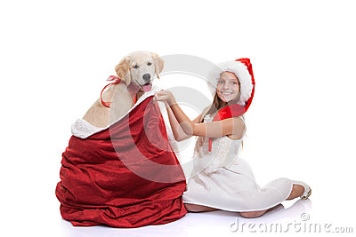 Christmas holiday pet dog gift