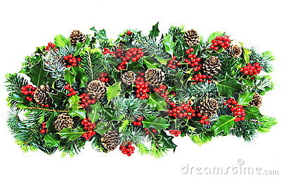 Christmas Holly and Foliage