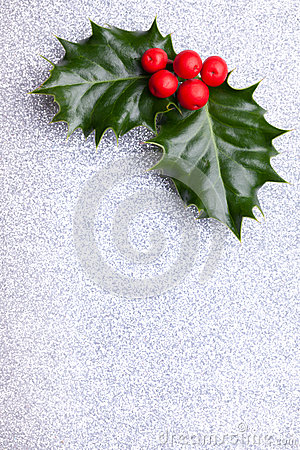 Free Christmas Holly With Red Berries Stock Photo - 34920670