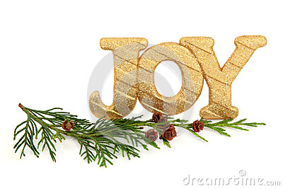 Christmas Joy Royalty Free Stock Photos - Image: 27072198