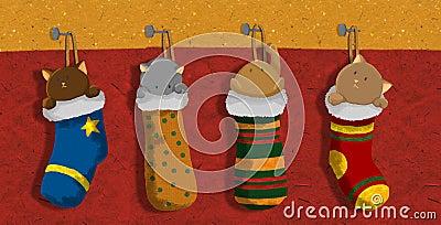 Christmas kitten socks