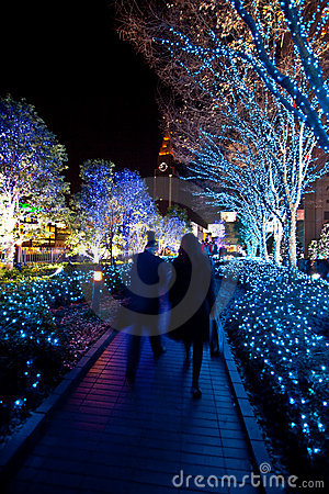 Free Christmas Lighting Landscaping Stock Image - 7797521
