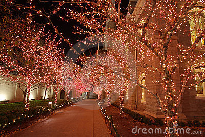 Christmas lights in the night