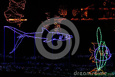 christmas lights - tropical fish and shark stock photos - image, Reel Combo