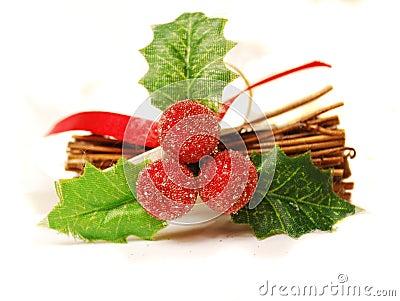 Christmas mistletoe.