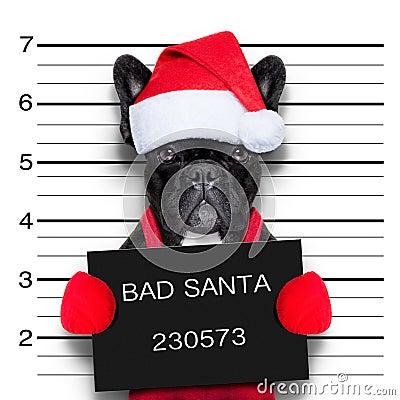 Free Christmas Mugshot Royalty Free Stock Photos - 45705748