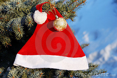 Christmas And New Year Ornament Royalty Free Stock Image - Image: 16635476