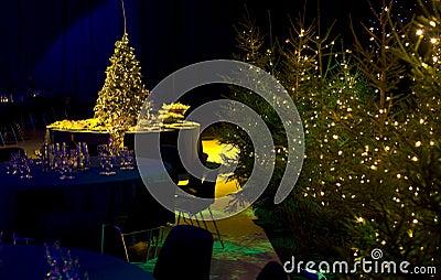 Christmas Party Arrangement