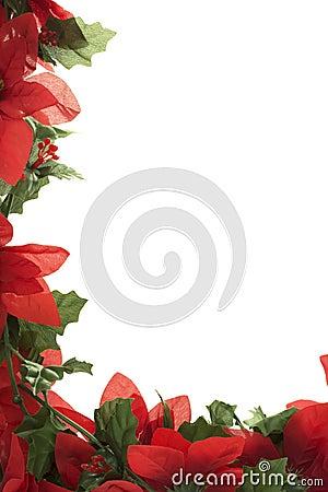 Free Christmas Poinsettia Border Royalty Free Stock Photography - 3465597