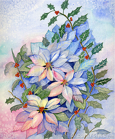 Christmas poinsettia Original Watercolo