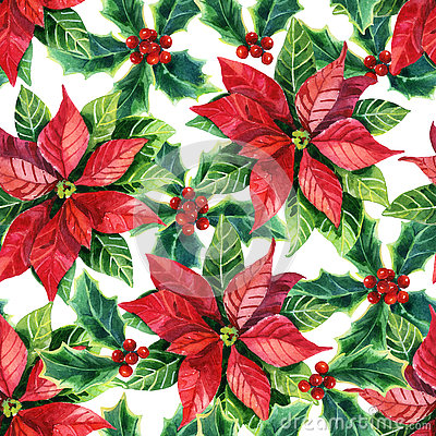 Free Christmas Poinsettia, Watercolor Flower Royalty Free Stock Photos - 72823378