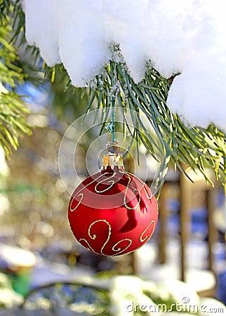 Christmas red ball on fir-tree branch