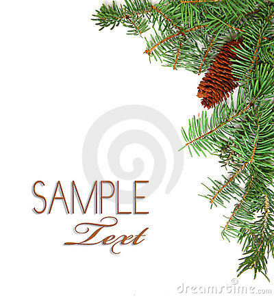 Christmas Rustic Image of Pine Tree Stems and a Pi