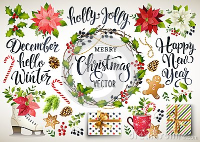 Christmas set design of poinsettia, fir branches, cones, holly and other plants. Cover, invitation, banner, greeting c Vector Illustration