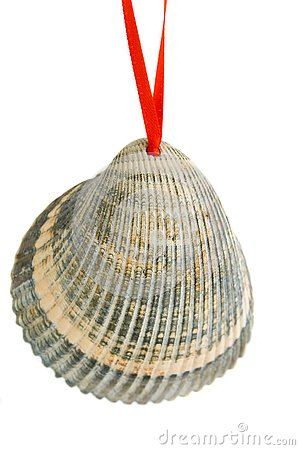 Christmas Shell Ornament