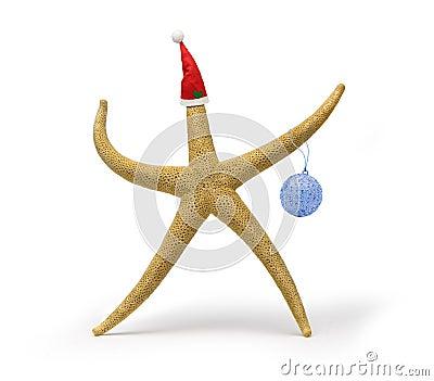 Christmas Starfish Beach Fun