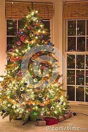 Free Christmas Tree Stock Photos - 1209813