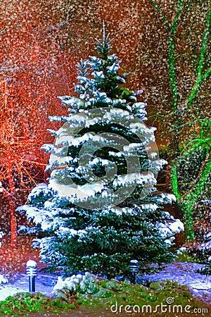 Free Christmas Tree Stock Photo - 1288730