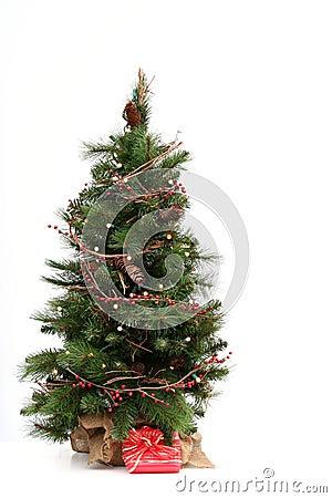 Free Christmas Tree Royalty Free Stock Photos - 1518058