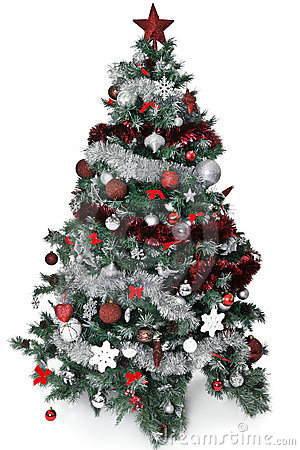 Free Christmas Tree Royalty Free Stock Photos - 21887228