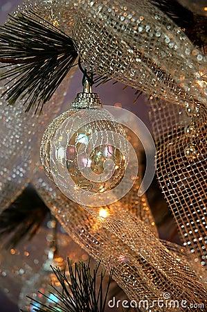 Free Christmas Tree Stock Images - 247774