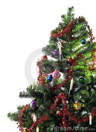 Free Christmas Tree Stock Photo - 337310