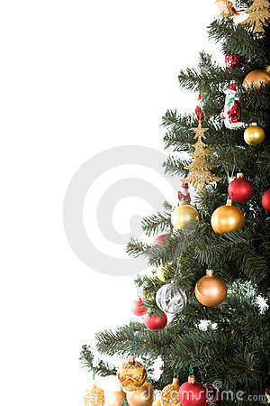 Free Christmas Tree Royalty Free Stock Photo - 6765665