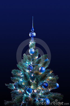 Free Christmas Tree Royalty Free Stock Images - 7700669