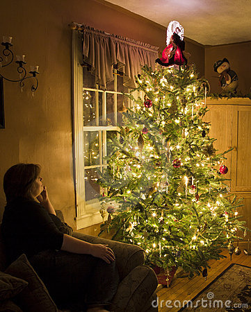 Christmas tree with admirer
