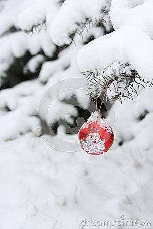 Christmas Tree Ball Decoration - Stock Photo