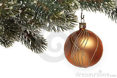 Christmas tree ball on fir branch