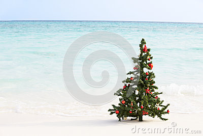 Christmas Tree On Beautiful Tropical Beach