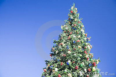 Christmas tree on blue sky background