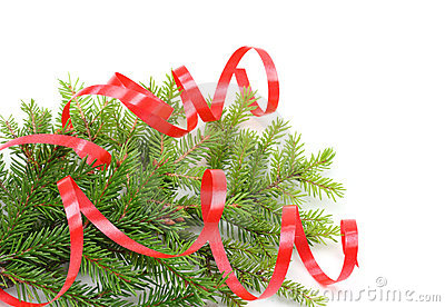 Christmas tree branch and red ribbon