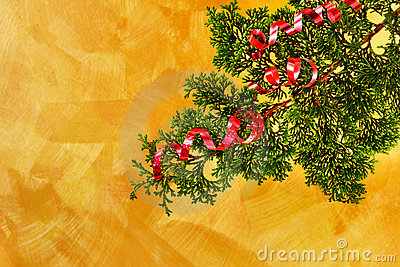 Christmas tree branch with red ribbon decoration