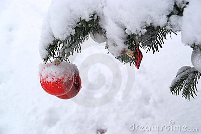 Christmas tree decoration with real snow